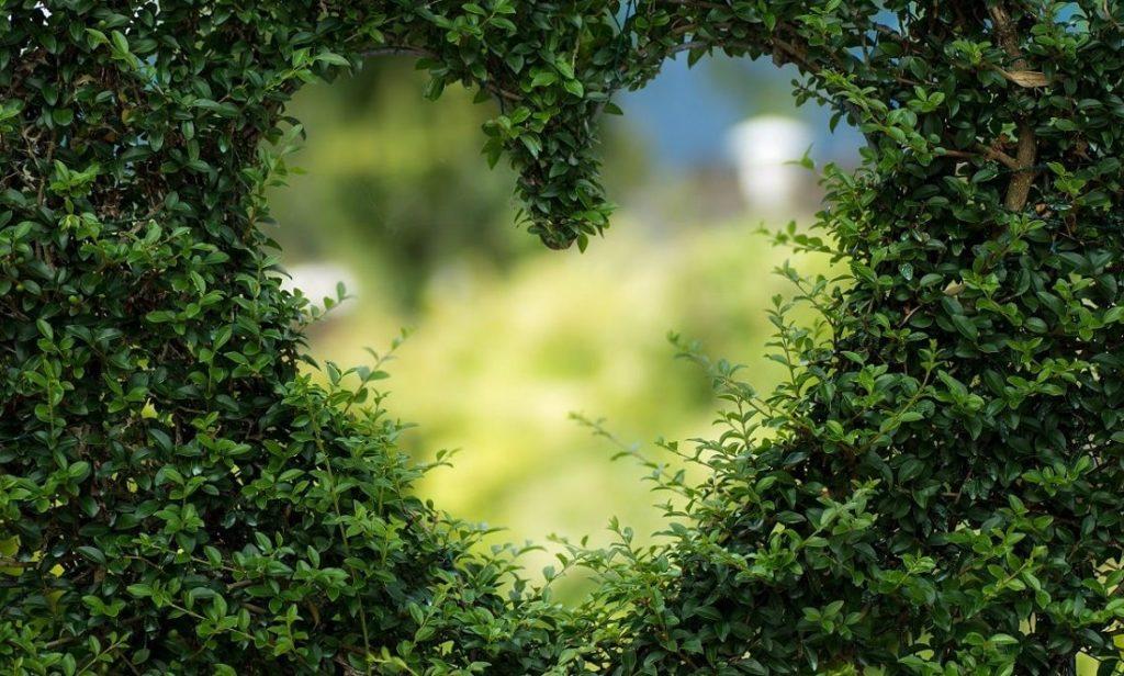 Naturaleza y medio ambiente