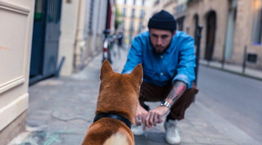 perro con dueño